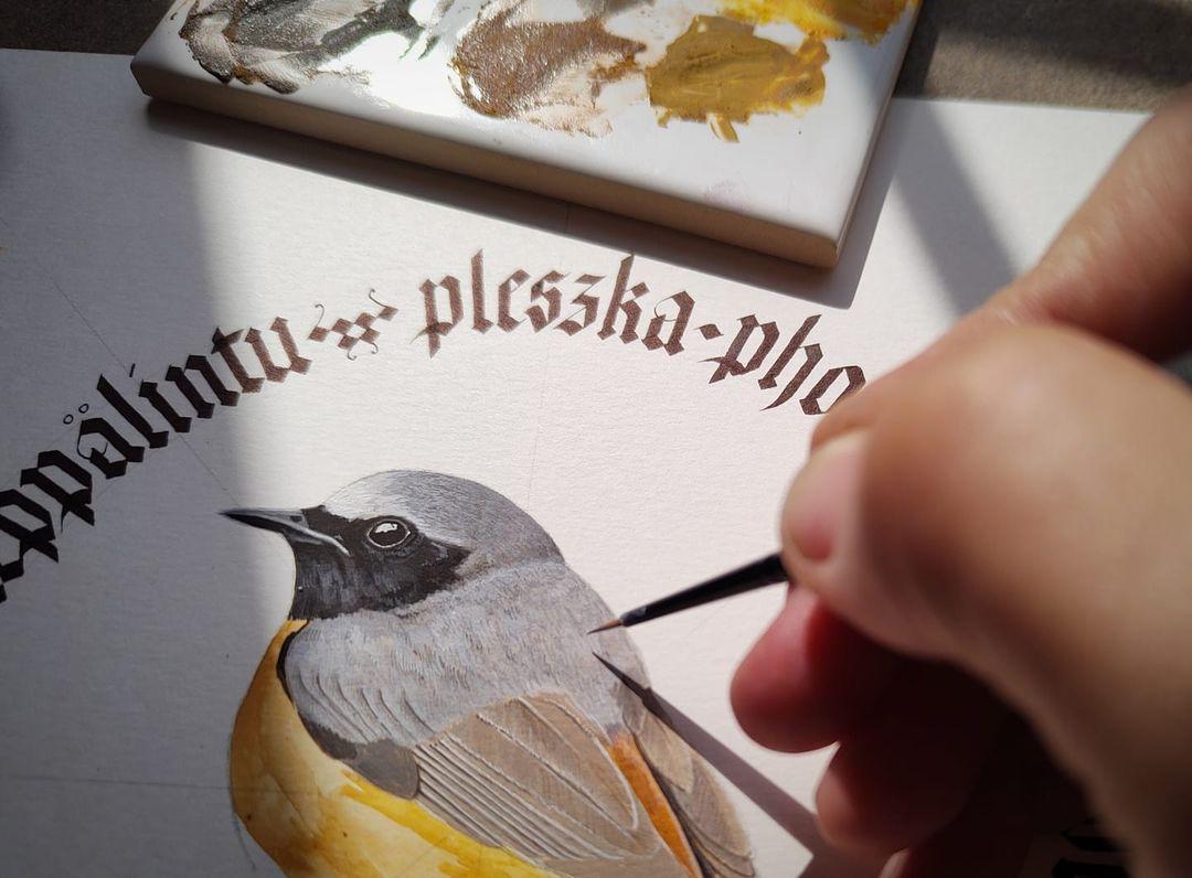 kurs kaligrafii Littera Nova Warszawa